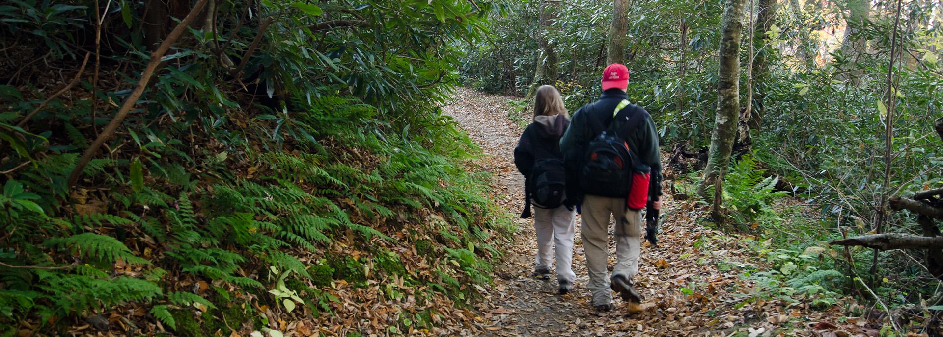 about walking down trail